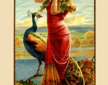 Bar Bordeaux Peacock Fashion Girl with Grapes Red White Wine France French Poster Repro FREE SHIPPING