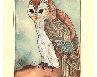 Owl Art - Wall Art - Home Decor - Watercolor Art Print - Owl Art Print - Owl Illustration Print - Owl Print - 8x10 Print - Night Owl