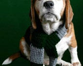 Harry Potter Slytherin House inspired wizard dog Scarf