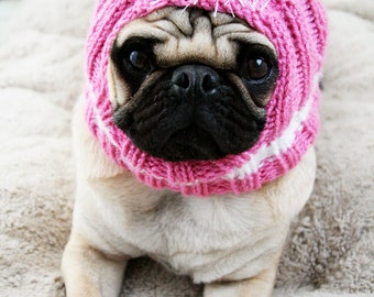 Custom Preppy Dog Hat - The Original Pug Hat