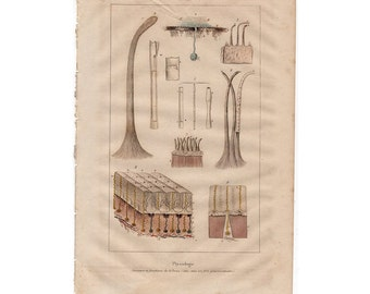 1835 SKIN ANATOMY physiology original antique medical anatomy print