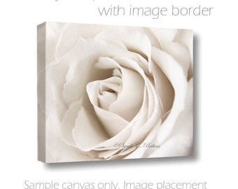 "Romantic Sepia Rose Petals Fine Art Photography Canvas Wall Art ""Romance Me"" Original/Signed Art Home Decor Guest Room/Nursery/Bathroom"