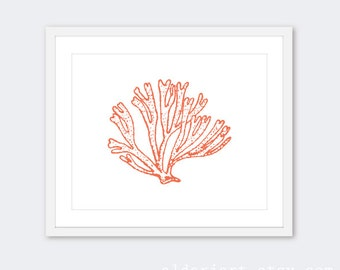 Coral Art Print  / Coral Wall Art / Modern Vintage Nautical Home Decor / Coral Bathroom Print / Aldari Art