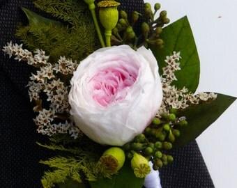 Wedding Boutonniere, Preserved rose boutonniere, Blush rose boutonniere, Groom's boutonniere, Wedding boutonniere - ENGLISH GARDEN.