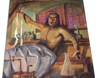 Illustrated Junior Library: Frankenstein by Mary Shelley & Larry Schwinger, hardback