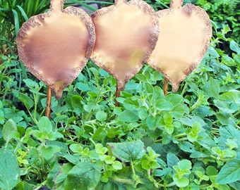 Solid Copper Garden Plant Stake Tags Set of Three Stone Textured Handmade