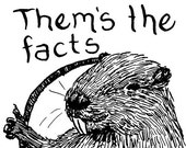 Beavers: Them's the Facts