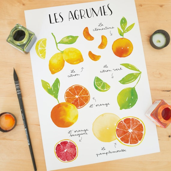 Pretty watercolor citrus print