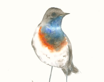 Fine Art Print from Original Watercolor Artwork Bluethroat