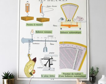 Vintage French Illustration, Scales and Water in Nature , Double Sided Educational Chart