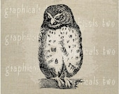 Angry owl print Instant clip art graphic digital download image transfer for iron on fabric burlap decoupage pillow card tote  No. gt167