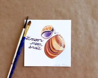 """Original Gouache Moor Moon Snail Seashell Miniature Painting on Bristol Board - """"31 Days of Seashells"""" Collection"""