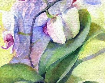 Flower watercolor painting - original painting of Orchid flower