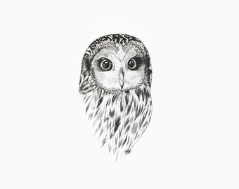 Owl Print, Owl Decor, Owl Ink Print, Owl Art, Owl Drawing, Owl Illustration, Owl Artwork, Owl Ink drawing, Owl Drawing Print, Owl Wall Decor