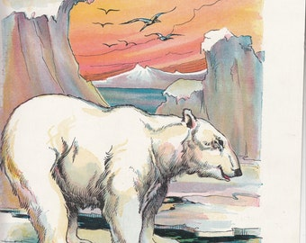 """Vintage Linen Print From Book Of Polar Bear Signed Constance White 9 1/2"""" X Just over 12"""""""