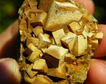 Golden barite cluster with iron oxide, Bernice Montana, Miniature self collected mineral specimen
