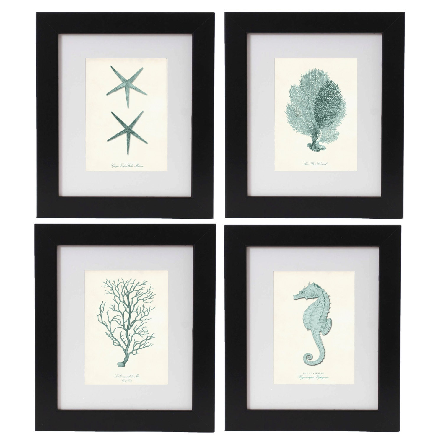 Nautical Print Set of 4 in Seafoam Nautical Wall Art