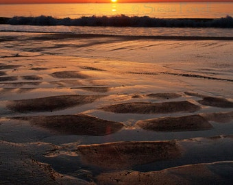 Jersey Shore, Sunrise Photo, Birds, Orange Sunrise, Beach Photo, Beach Sunrise, Seascape, Coastal Art