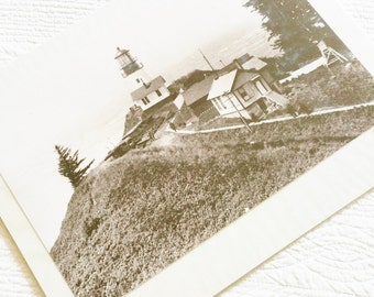 Vintage Coastal Sepia Tone Cape Disappointment, WA Photograph, 1899 Publication, Olives and Doves