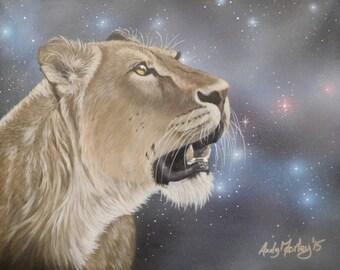 "Lioness - Wildlife art print - ""Stargazing""  - mounted, ready to frame"