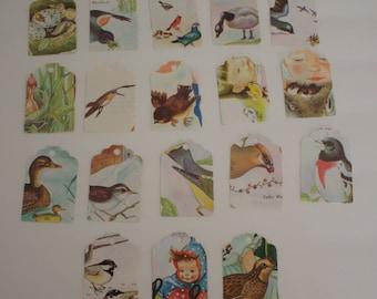 Die Cut Repurposed Children's Little Golden Book Birds Book Tags (Set of 15)