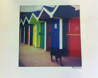 Barry Island Huts (21 and A Dog)Limited Edition