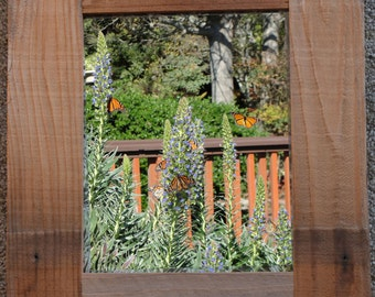 FIELD OF BUTTERFLIES 8X10 Fine Art Photo in Re-Purposed Redwood Custom Frame 13x15 ~ Made in America ~ Signed Original