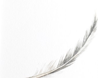 Feather - feather print - feather art - gray feather - watercolor - feather watercolor - feather print - bird - bird feather - grey feather
