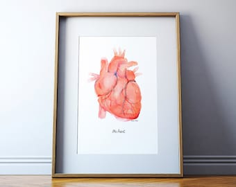 Anatomical Heart - Human Heart Print - Anatomically Accurate Watercolor Art Print