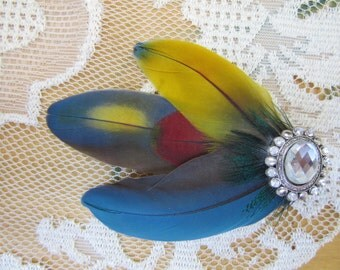 Hair accessories accessory, multicolored hair clip, feather hair clip, wedding clip, feather hair fascinator, blue clip, parrot feathers
