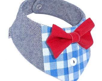 Dog scarf checkered red shirt look blue with fly