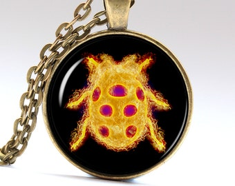 Ladybug amulet Ladybird pendant Lady cow necklace Ladybug jewelry Ladybug Necklace Ladybug Pendant Ladybug Jewelry Lady cow Pendant LG059