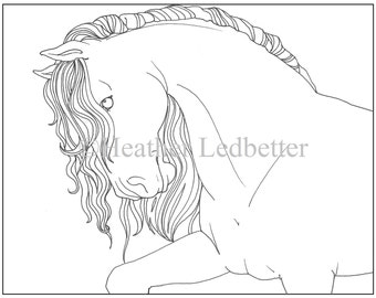 Beautiful Horse Coloring Page