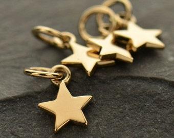 Tiny Bronze Small Star Charm
