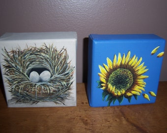 Small bird nest painting
