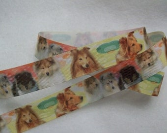 "Grosgrain Ribbon 7/8"" Sheltie, perhaps Collie?"