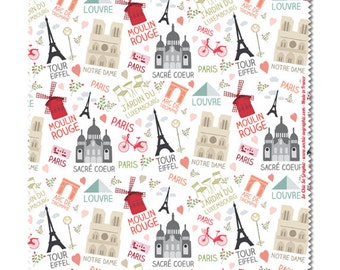Cleaning cloths for glasses Paris of monuments