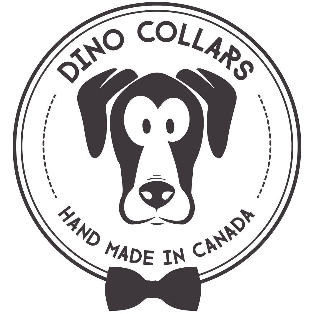 hand made dog collars  u0026 bow ties for your best by dinocollars