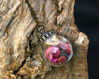 Seashell Vial Necklace