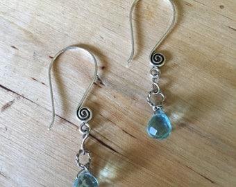 Elegant Blue Swirl Earrings