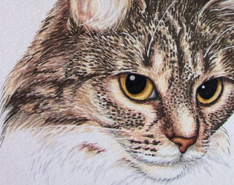 CUSTOM pet portrait / cat / dog / animal / illustration commission in promarkers color pencil and ink