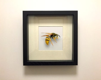 WASPISH  -  Handcrafted 2D print mounted inside picture frame