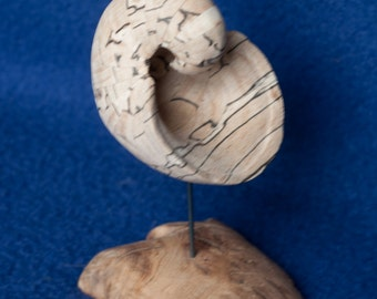 Wood shell sculpture