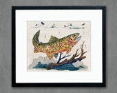 Greenback Cutthroat Trout Art Print
