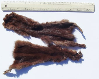"Presumed mink vintage skins real fur two matched pastel color pelts each 11 inches long to toe and 4 1/2"" at widest"