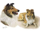 COLLIE (2 dogs) DOGS on 6 inch Fabric Squares -  for Quilting and Sewing
