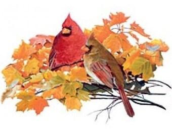Cardinal Short Sleeve Tee Shirt Halloween Thanksgiving Sizes Small - 3XL Plus Sizes Too Free Shipping New Autumn Leaf Costume Pumpkin Leaf