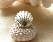 Silver Sunrise Shell Ring With Wings