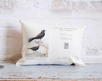 bird book pillows
