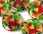 """20mm Autumn Leaves Mother Of Pearl Disc MOP Beads 16"""" (e7431)"""